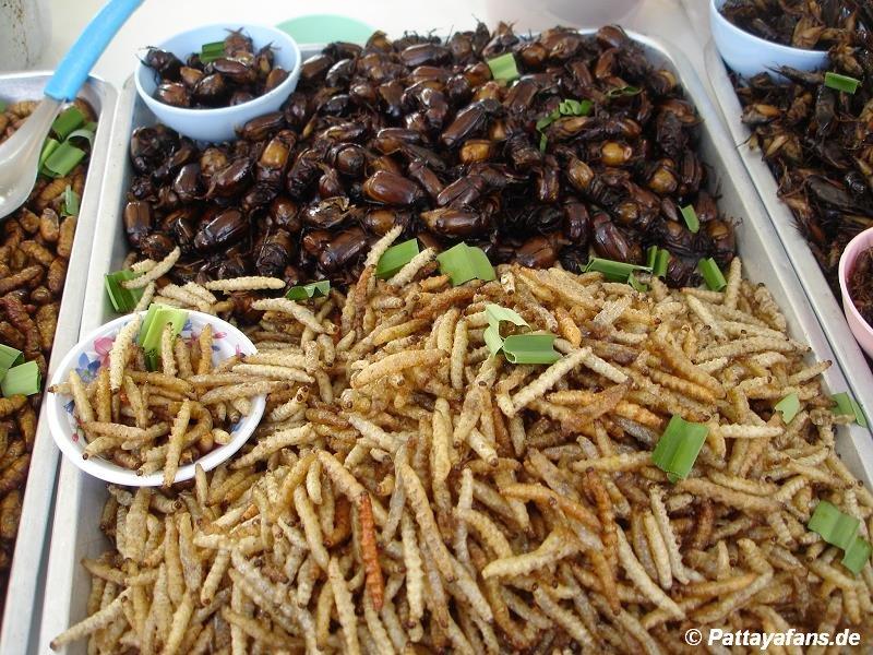 frittierte insekten in thailand essen. Black Bedroom Furniture Sets. Home Design Ideas